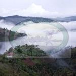 Burundi Landscape