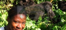 3 Days Gorilla Trekking Tour in Kahuzi Biega National Park