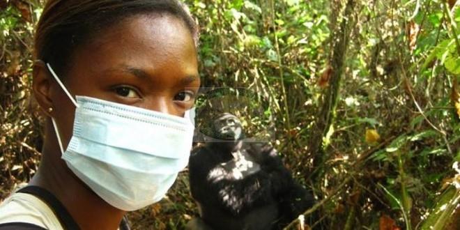 7 Days Mountain Gorilla Trekking & Climbing Nyiragongo Volcano + Lowland Gorilla Safaris + Tours of Eastern DRC