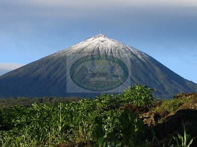 5 Days Mountain Gorilla Trekking and Climb Karisimbi Volcano