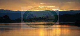 IDJWI ISLAND in Lake Kivu: