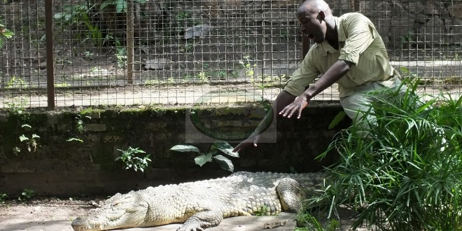 Burundi Museums and Zoo